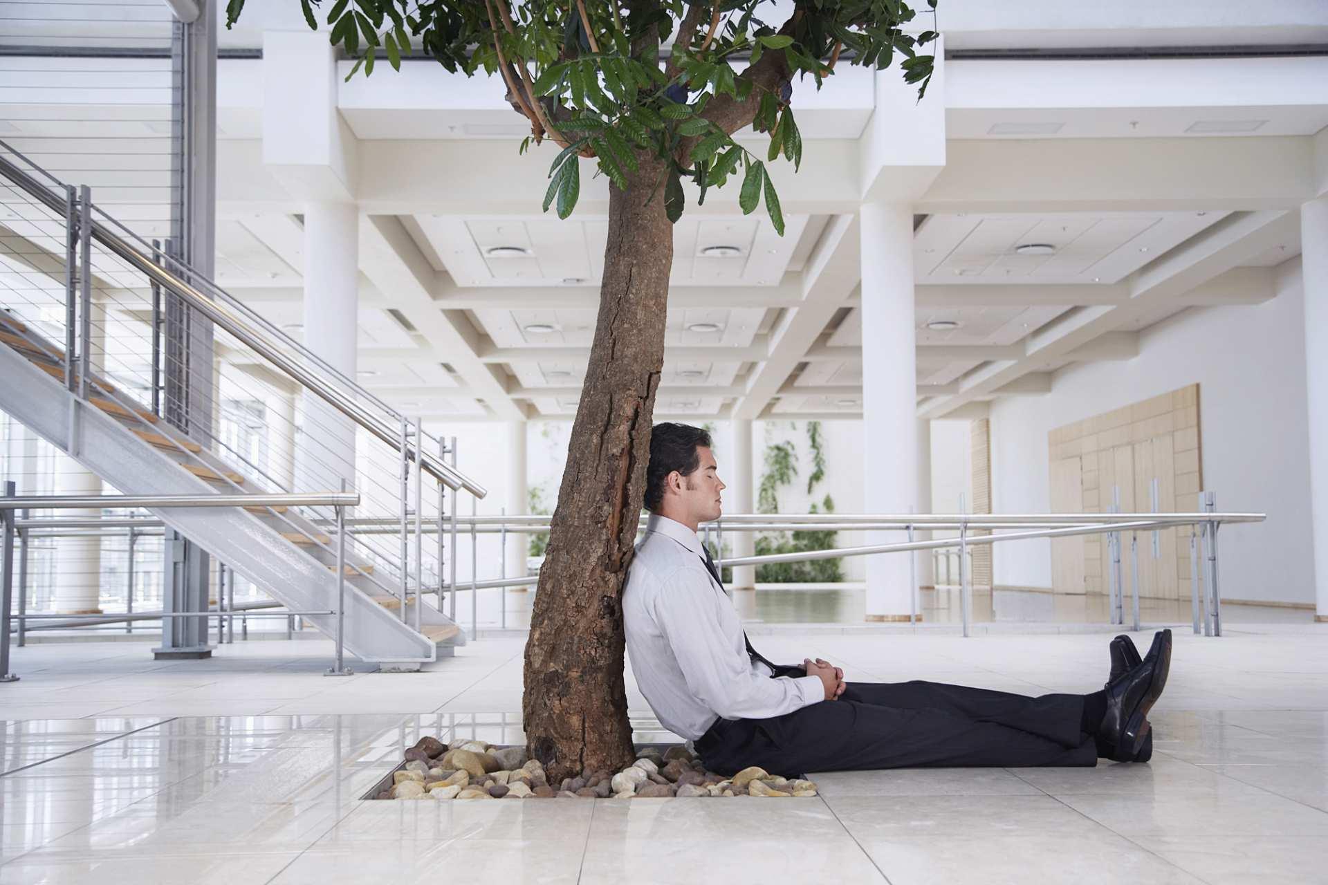 Fachberater für Burnout-Prävention und Stressmanagement